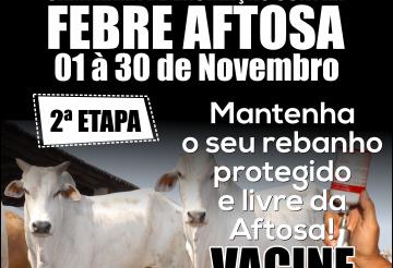 Nova etapa de vacinação contra aftosa começa nesta quarta-feira